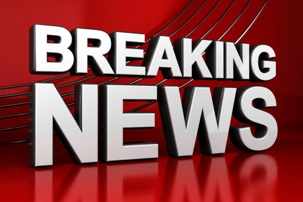 Более 74 тыс. мальков сазана выпустили в водоемы Тверской области