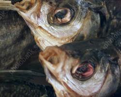 На рынке обнаружена рыба, срок годности которой истек в 2019 году