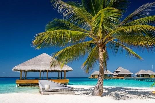 Российские туристы на Мальдивах будут платить новый налог