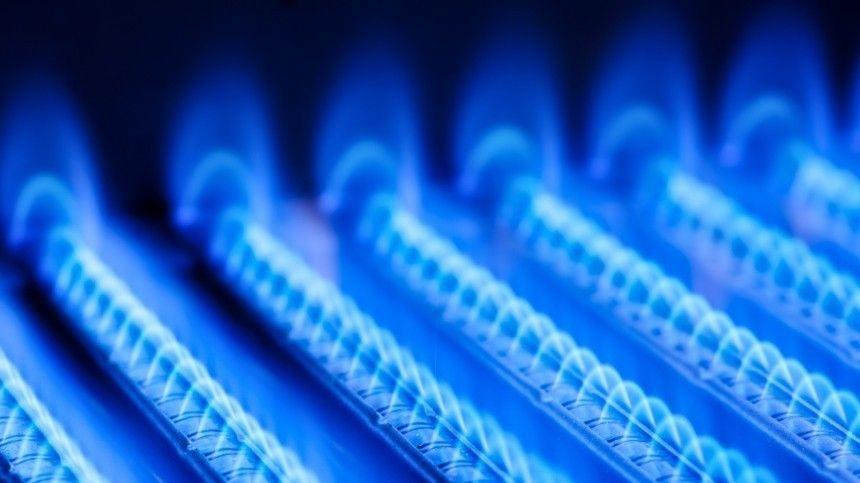Европе предрекли кризис из-за высоких цен на газ