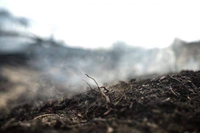 Куйвашев: ситуация с дымом в Екатеринбурге улучшится к концу недели