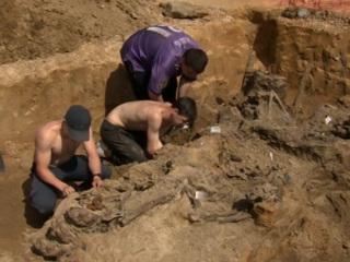 Осквернение братского захоронения защитников Ленинграда: расследование продолжается