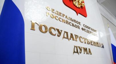 В Госдуме прокомментировали решение ЕСПЧ отказать России в применении обеспечительных мер к Украине