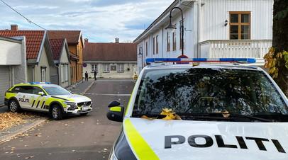 Генсек НАТО осудил нападение мужчины с луком в Норвегии
