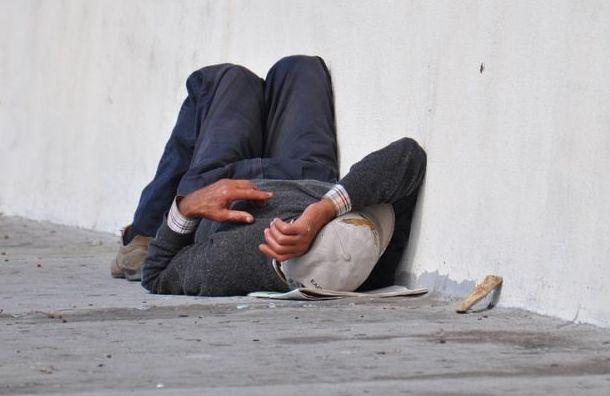 Петербургский мундеп помог местной жительнице выгнать бездомного на улицу