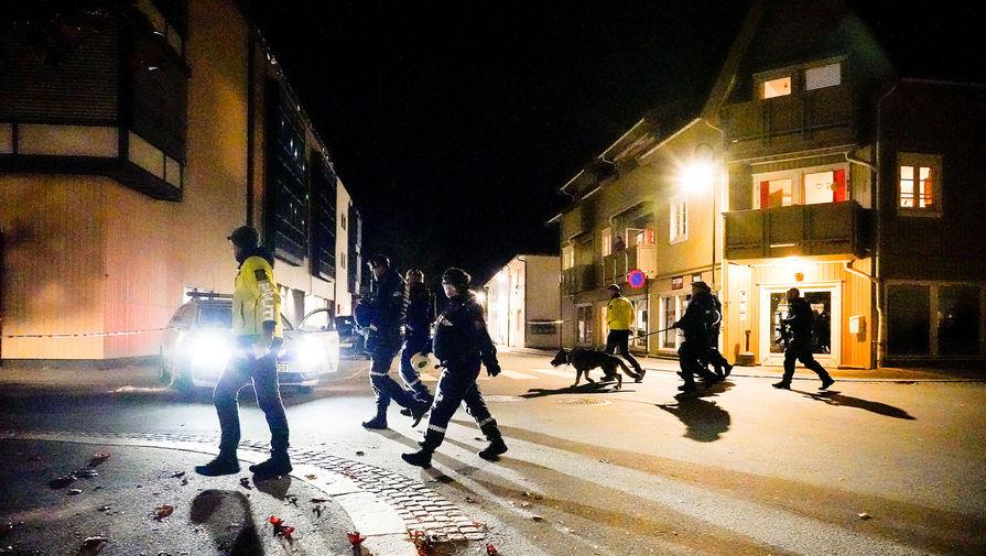 Полиция задержала мужчину, застрелившего из лука пять человек в Норвегии