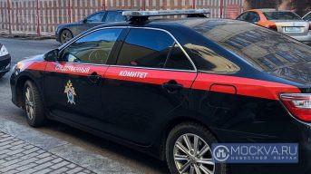 СК Москвы после поручения Бастрыкина начал проверку инцидента с агрессивными пассажирами метро