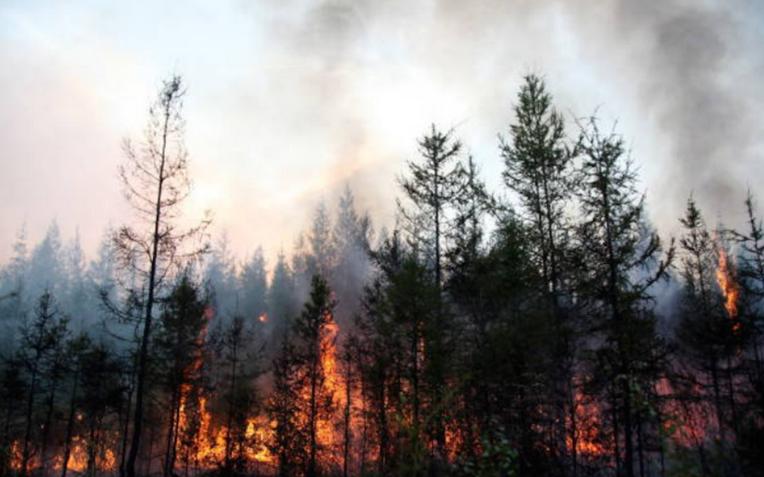 Для тушения пожаров в Якутии произведут взрывные работы