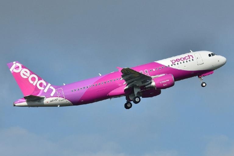 В Японии авиакомпания позволит клиентам летать по стране неограниченное количество раз в течение месяца за $200