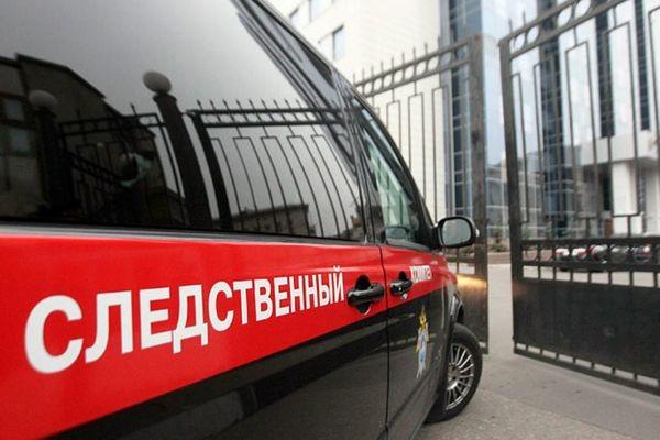 В СК РФ назвали приоритетную версию смертельного отравления москвичек, купивших арбуз